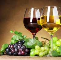 Wine and Cider industry